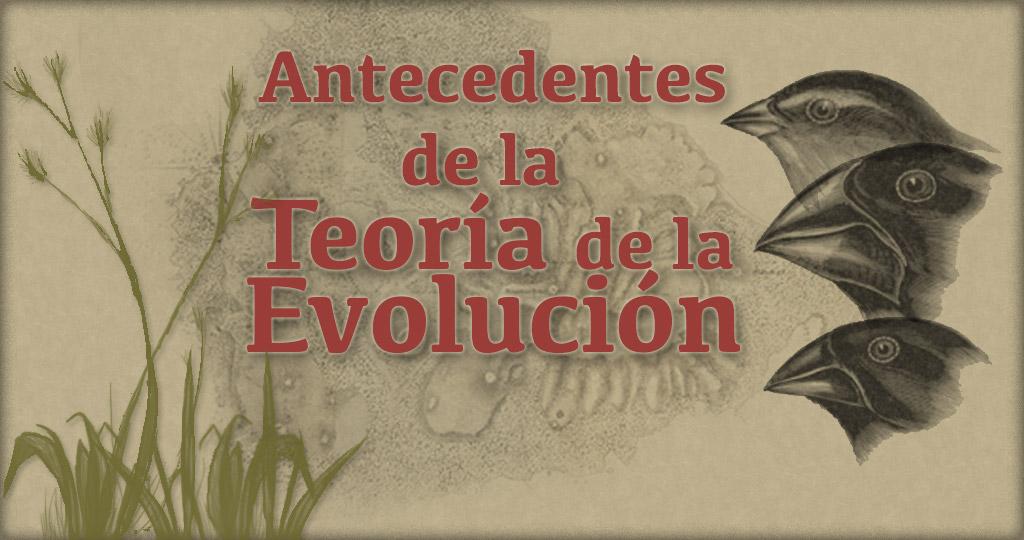 Antecedentes de la Teoría de la Evolución